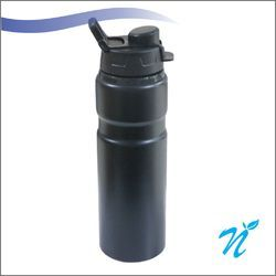 750 ml Metal Bottle