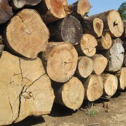 Ghana Teak Timber
