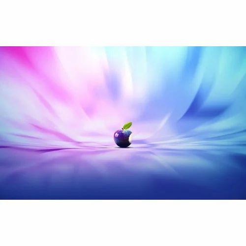 Kanak Shree Multi Color Pvc Wallpaper