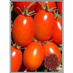 Abhimanyu Hybrid Tomato Seeds