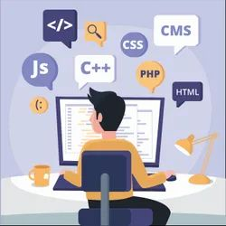 Web Design, With 24*7 Support