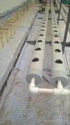 40 Plants Pipe System