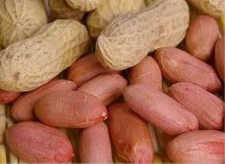 Groundnut, Packaging Type: Vacuum Bag