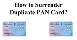 Online PAN Surrender Consultancy