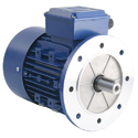 Flange Electric Motor