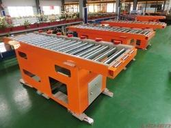 Custom Transfer Conveyor