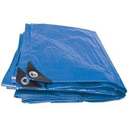 Blue Plastic Tarpaulin, Packaging Type: Box