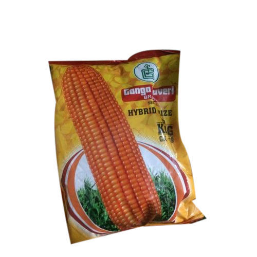 Corn Kernels Seed, 100g, Packaging: Packet