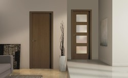 Metal Flush Doors