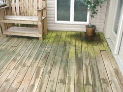 IPE Deck Flooring