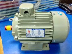 Single Phase AC Induction Motor, Speed: <500 RPM, Power: 0.5-1 hp