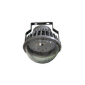 40w LED Well Glass