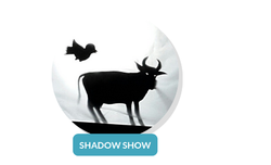 Shadow Show Services