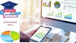 Statistical Analysis Service