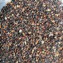 Ocimum Basillicum Oil