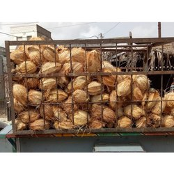 A Grade Solid Semi Husked Coconut, Packaging Size: 50 Kg, Coconut Size: Medium
