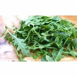 Green Roquette