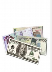 Foreign Exchange And Money Services