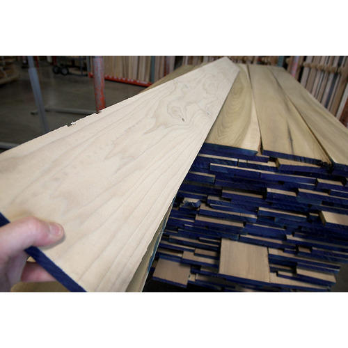 Poplar White Wood