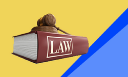 Consumer Law Practice Services