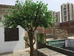 Artificial Ficus Tree