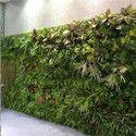 Artificial Vertical Garden Wall
