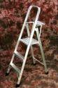 Platform Folding Ladder