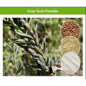 Fast Hydration of Guar Gum Powder