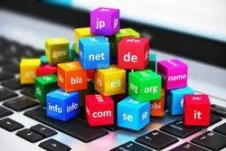 Dynamic Domain Registration