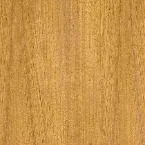 Centuryply Veneer Plywood