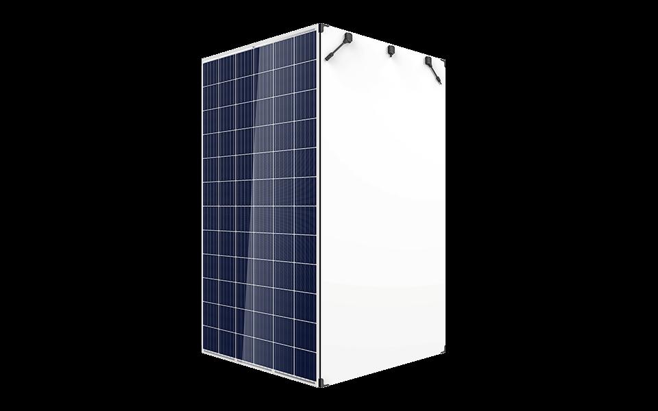 Vikram Solar Panels Eldora Grand Series Rs 19 5 Watt Go Solar A Brand By Taggart International Id 13864080648