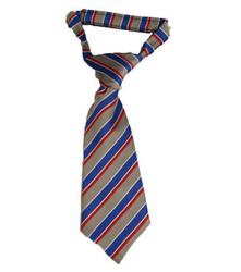 Multi Coloured School Tie