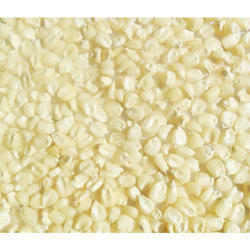 White Corn Seed