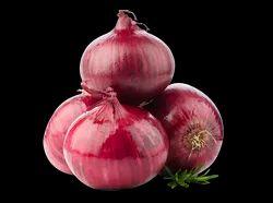 Maharashtra A Grade Export Quality Red Onion, Gunny Bag, 20 Kg