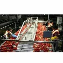 Apple Processing Project Report Consultancy