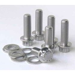 Duplex Steel Screws