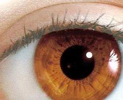 Charitable Eye Hospital