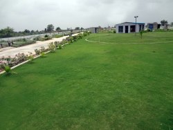 Factory Garden Maintenance Service, In Ahmedabad