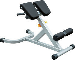 Non Weight Machines Cosco Hyper Extension Bench CS2