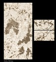 Artic White Digital Glazed Vitrified Tile