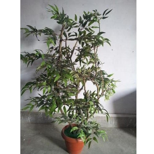Polyester  Fabric Artificial Ruscus Plant