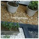 Decorative Pebbles Stones