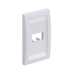 Faceplate dual Port Panduit