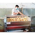Fruits And Vegetables Washing & Peeling Machine