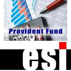 Consulting Firm ESI and PF Registration Service