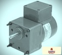 25 Watt AC Induction Gear Motor