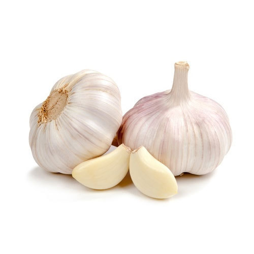 fresh garlic at rs 80 kilogram fresh garlic id 15357922188