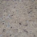 Random Stone Stamped Concrete Flooring Service