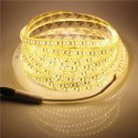 Plug Type Flexible LED Strips Light