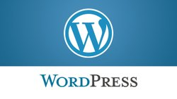 Responsive Wordpress Website Development Services, With Chat Support
